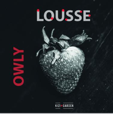 owly lousse kizi garden micro house music